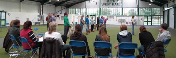 Specialist Training for Dog Behaviour